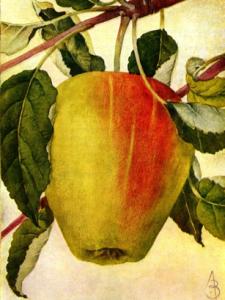 Appel Present of E. appel